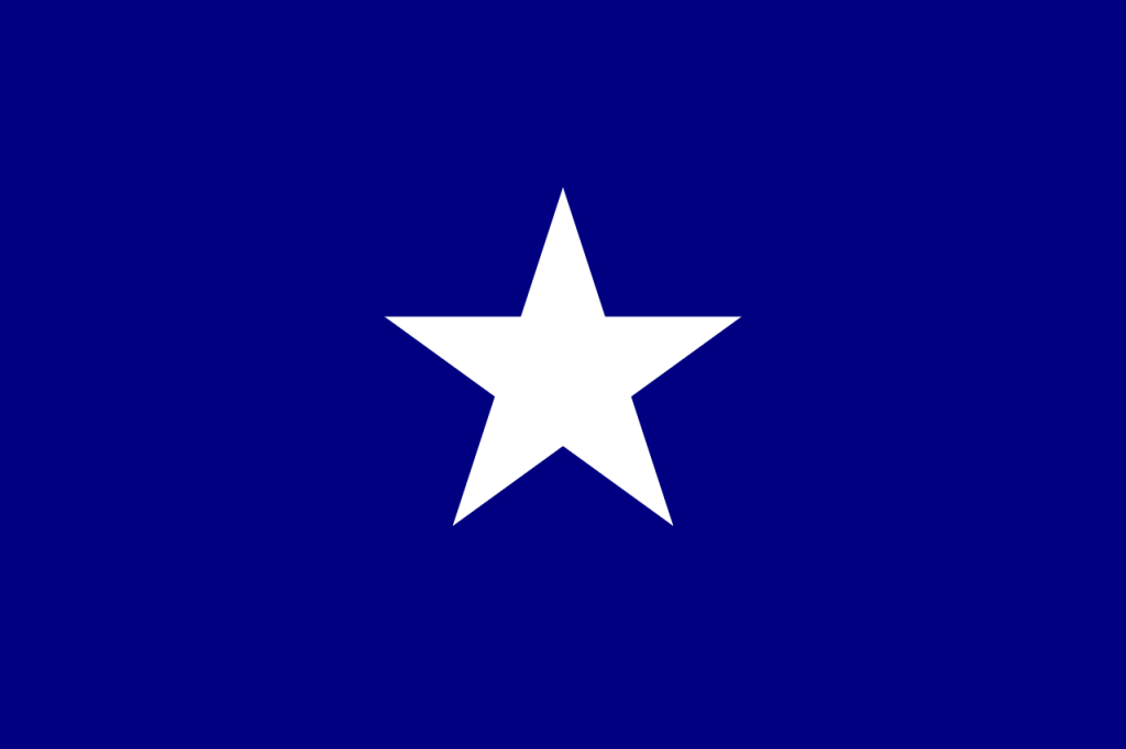 Bonnie Blue - Flags of the Confederacy